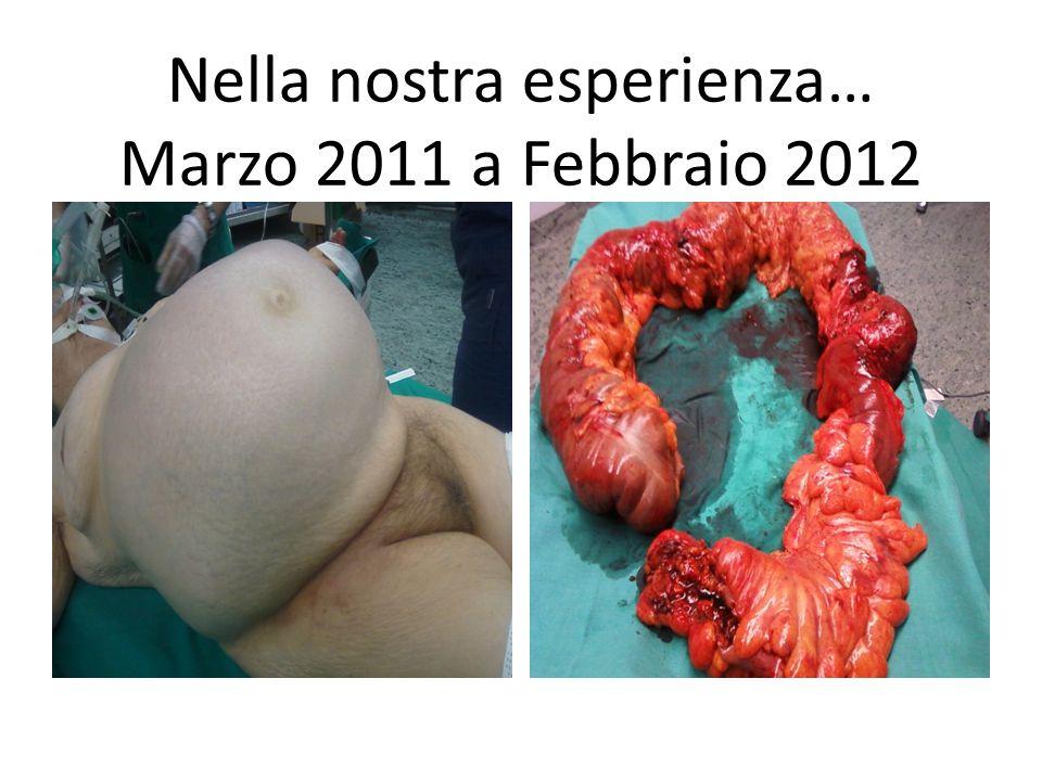 Nella nostra esperienza… Marzo 2011 a Febbraio 2012