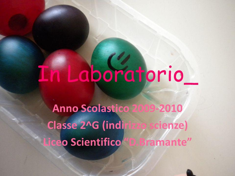 Classe 2^G (indirizzo scienze) Liceo Scientifico D.Bramante