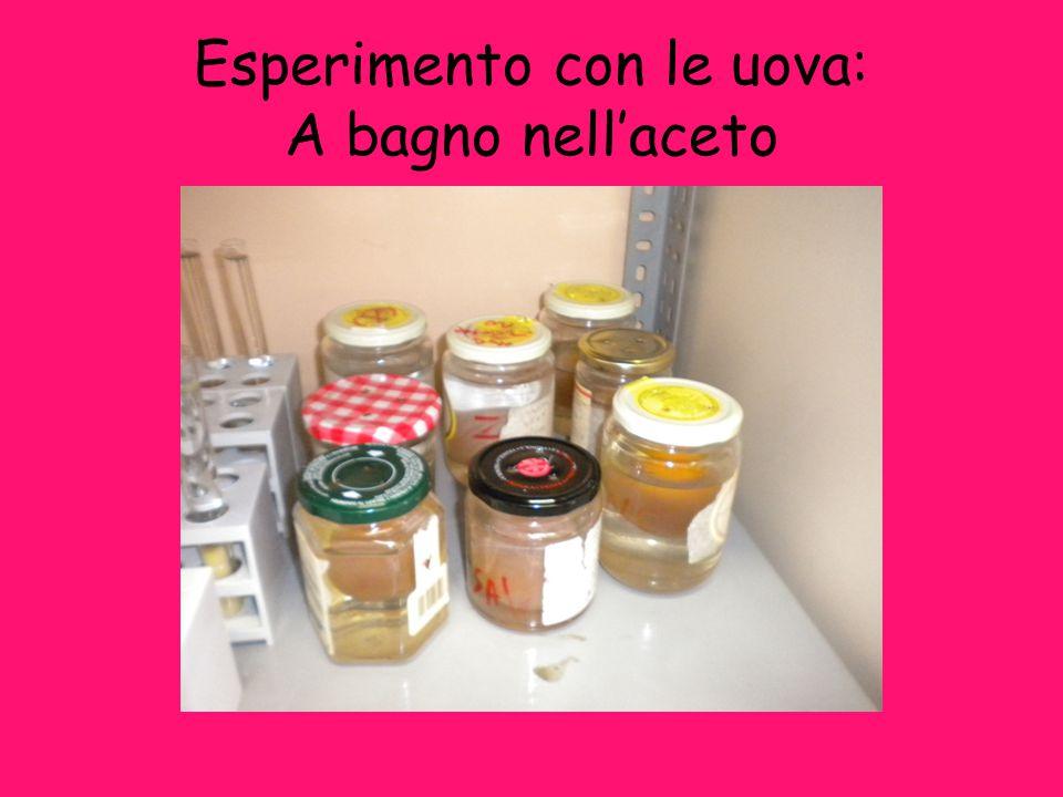 Esperimento con le uova: A bagno nell'aceto