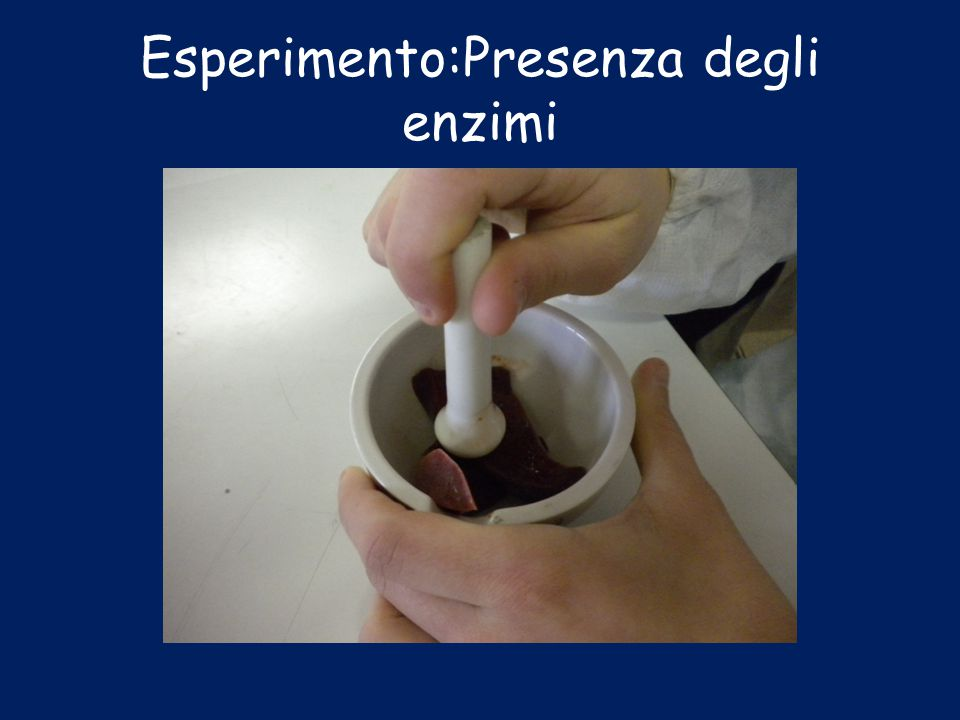 Esperimento:Presenza degli enzimi