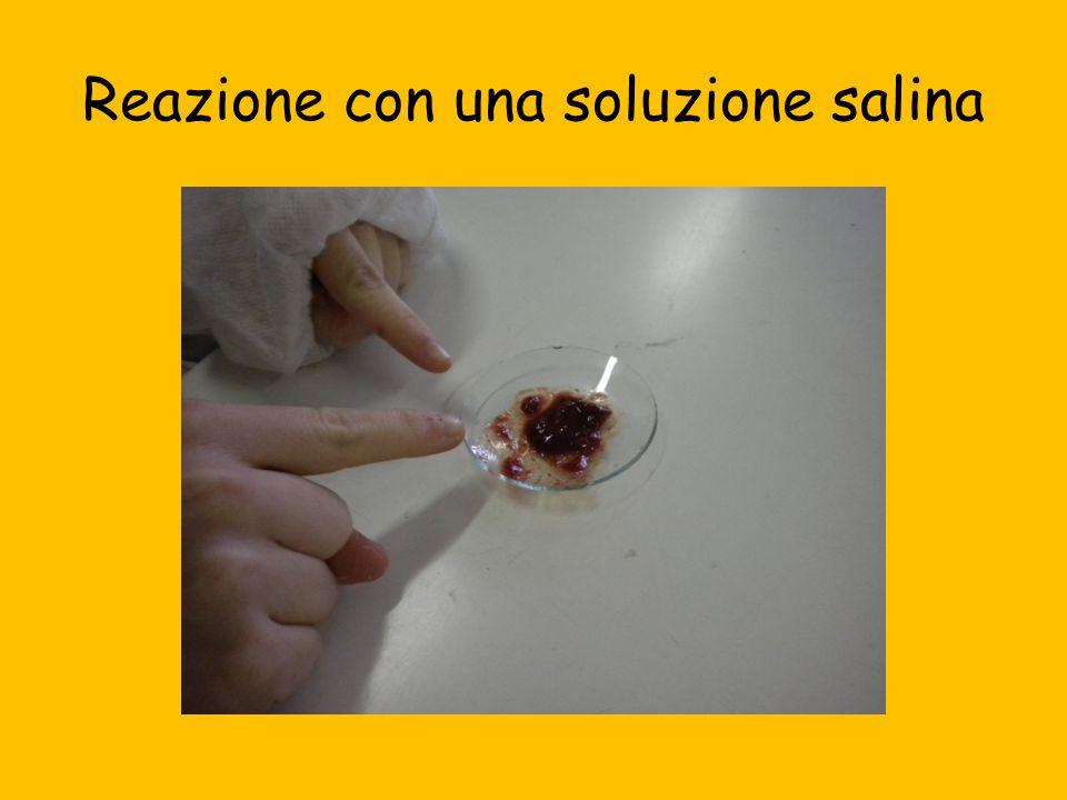 Reazione con una soluzione salina