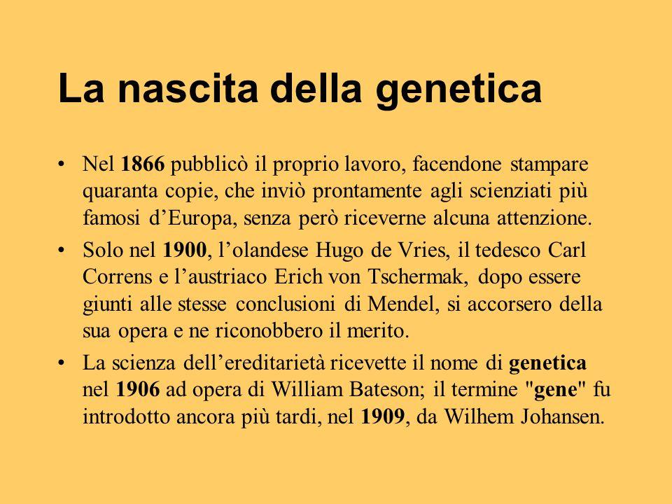 La nascita della genetica
