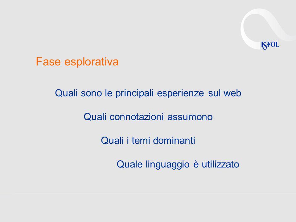 Fase esplorativa Quali sono le principali esperienze sul web