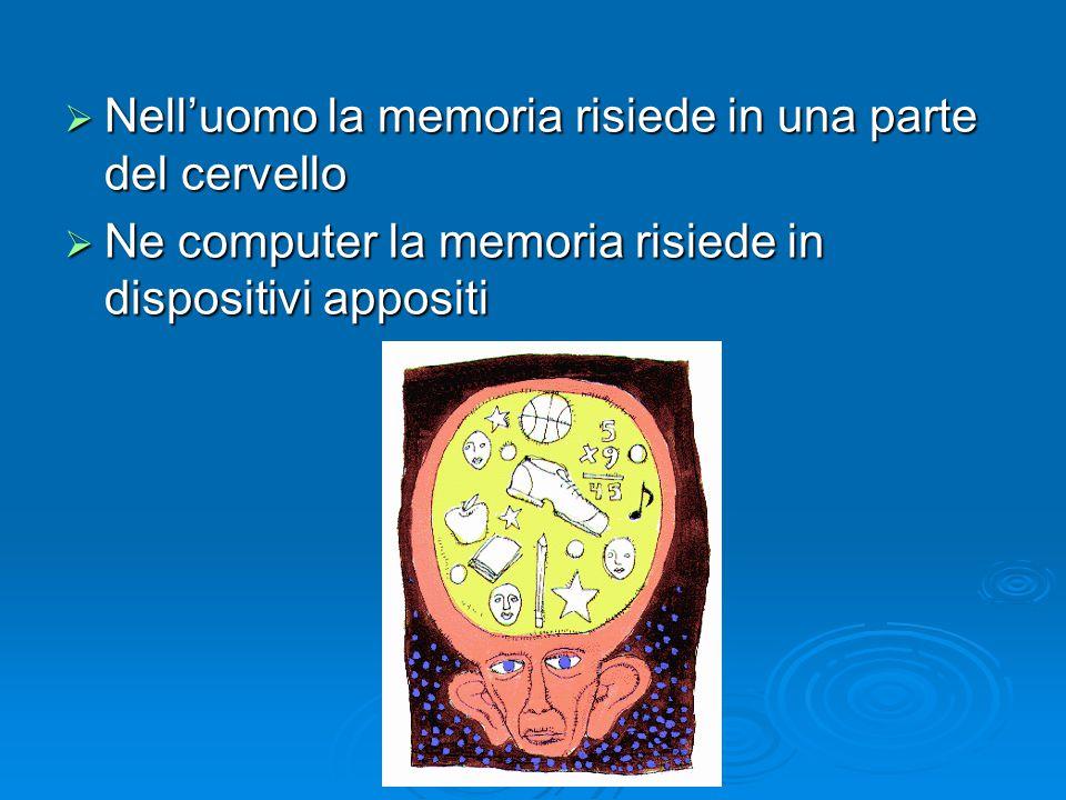 Nell'uomo la memoria risiede in una parte del cervello