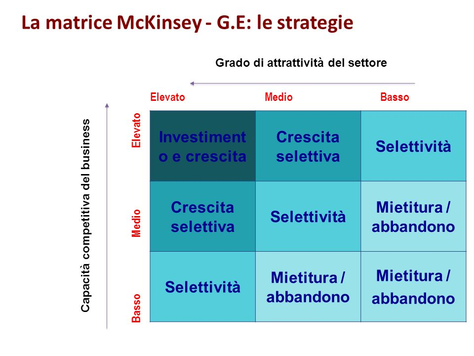 La matrice McKinsey - G.E: le strategie