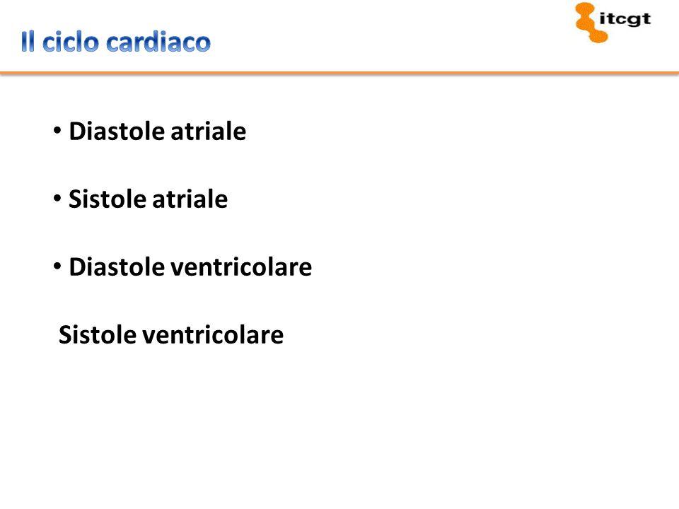 Il ciclo cardiaco Diastole atriale Sistole atriale