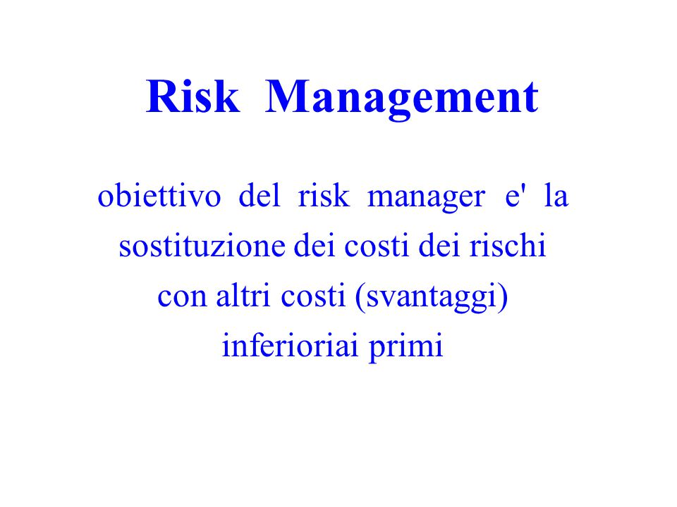 Risk Management obiettivo del risk manager e la