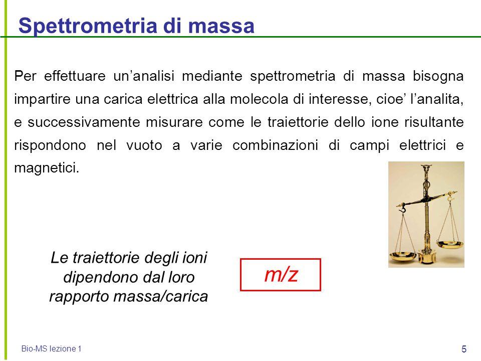 Le traiettorie degli ioni dipendono dal loro rapporto massa/carica