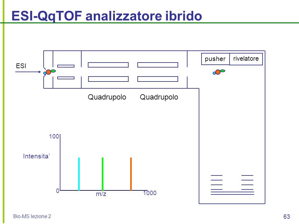 ESI-QqTOF analizzatore ibrido