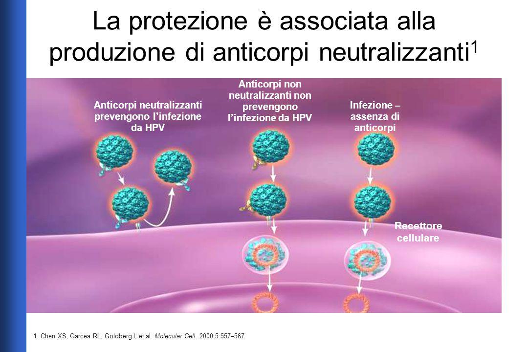 La protezione è associata alla produzione di anticorpi neutralizzanti1