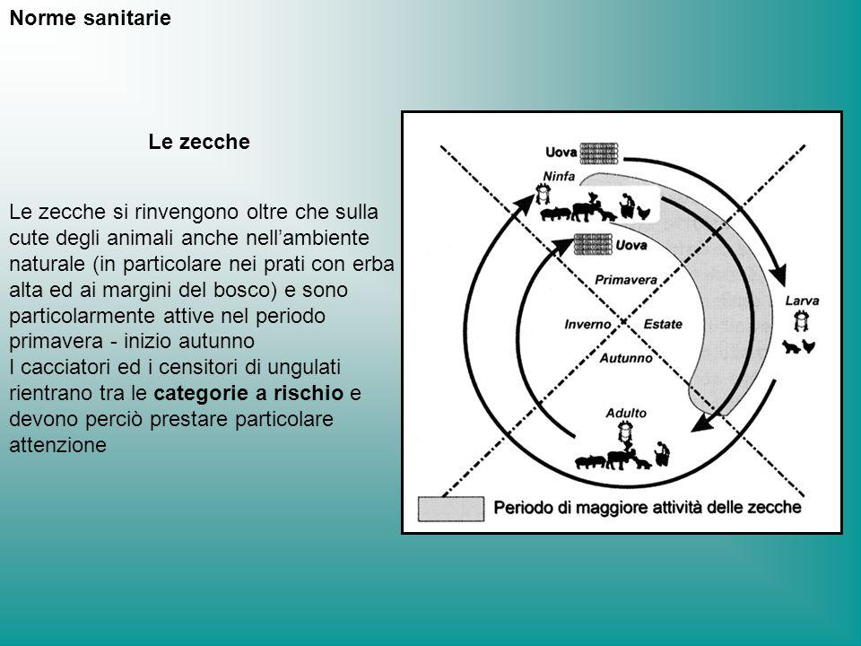 Norme sanitarie Le zecche.