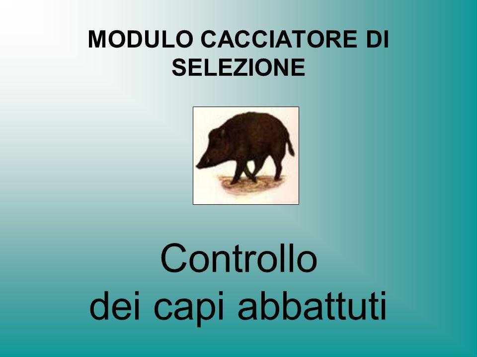 MODULO CACCIATORE DI SELEZIONE
