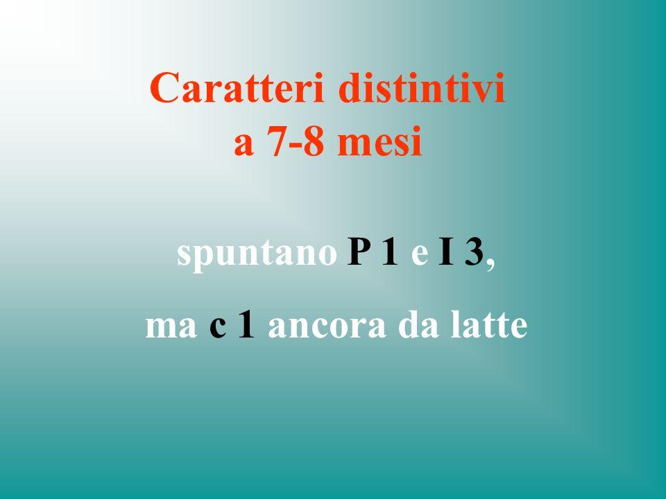 Caratteri distintivi a 7-8 mesi
