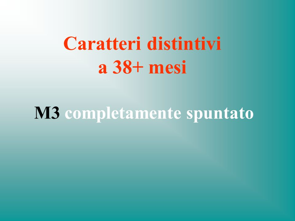 Caratteri distintivi a 38+ mesi M3 completamente spuntato