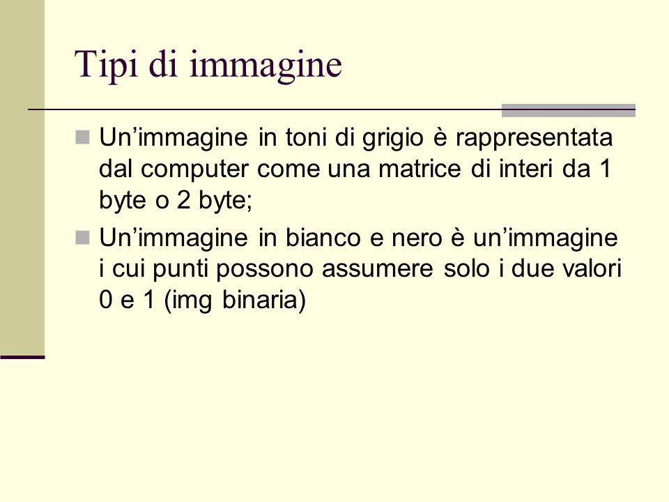 Tipi di immagine Un'immagine in toni di grigio è rappresentata dal computer come una matrice di interi da 1 byte o 2 byte;