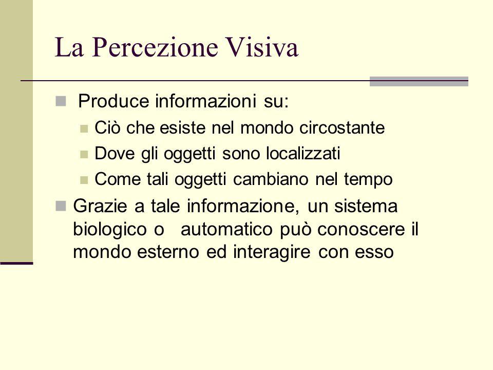 La Percezione Visiva Produce informazioni su: