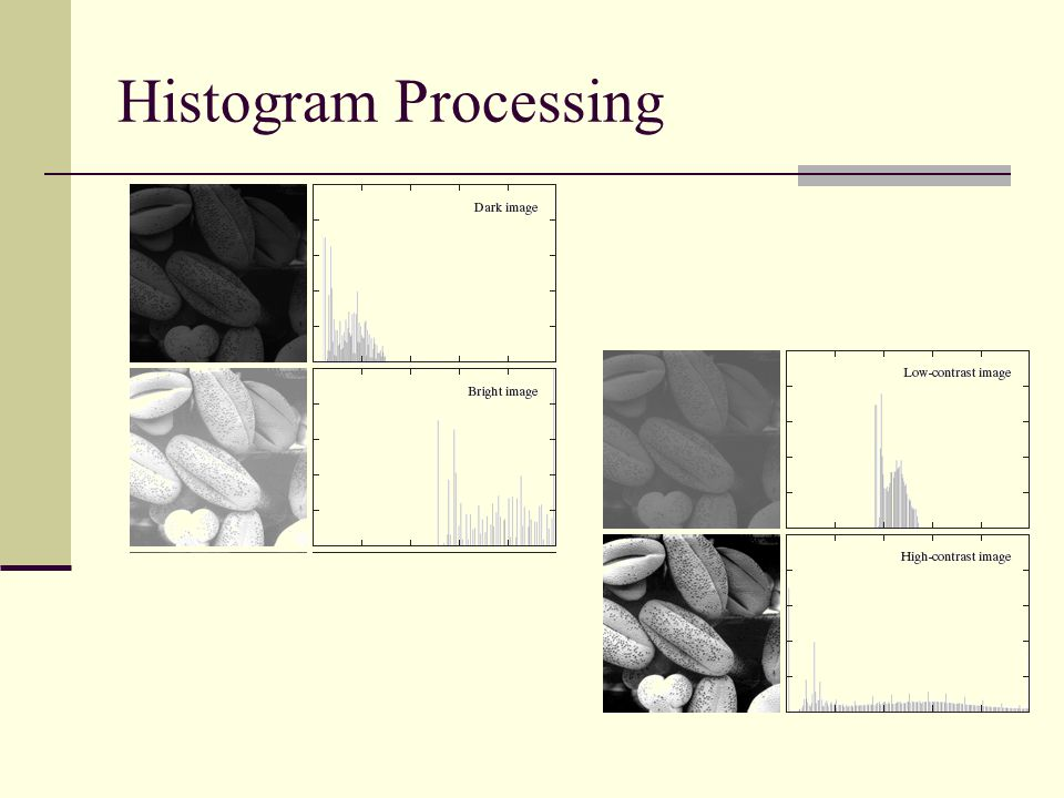 Histogram Processing