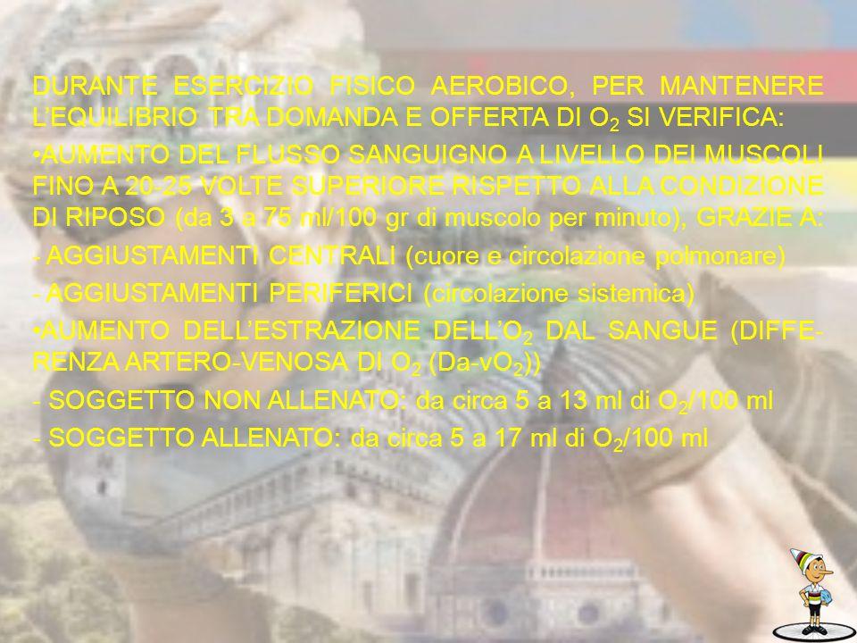 DURANTE ESERCIZIO FISICO AEROBICO, PER MANTENERE L'EQUILIBRIO TRA DOMANDA E OFFERTA DI O2 SI VERIFICA: