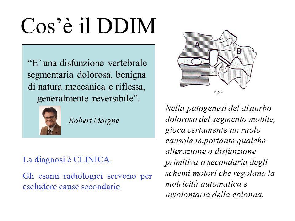 Cos'è il DDIM E' una disfunzione vertebrale