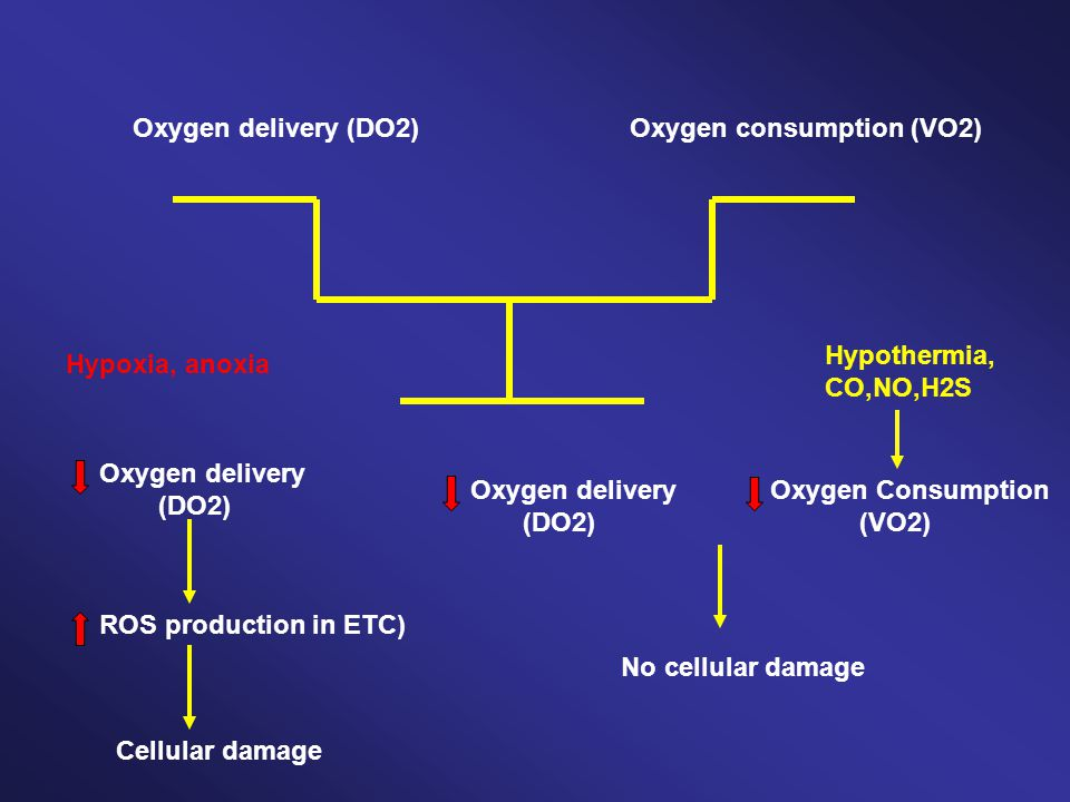 Oxygen delivery (DO2) Oxygen consumption (VO2) Hypothermia, CO,NO,H2S. Hypoxia, anoxia. Oxygen delivery.
