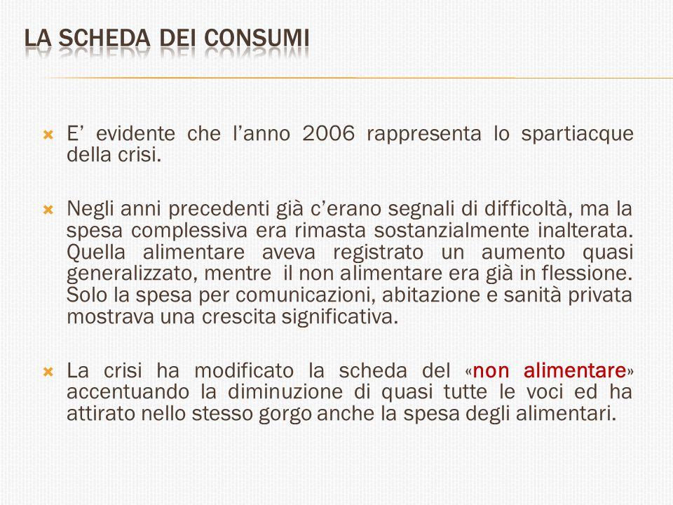 La scheda dei consumi E' evidente che l'anno 2006 rappresenta lo spartiacque della crisi.