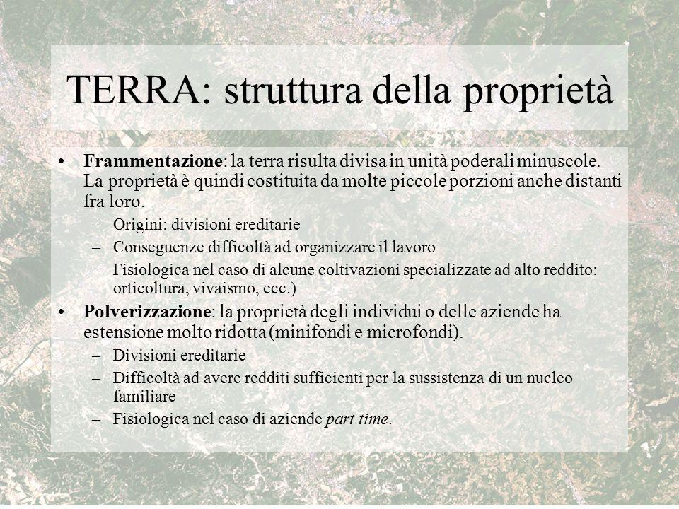 TERRA: struttura della proprietà