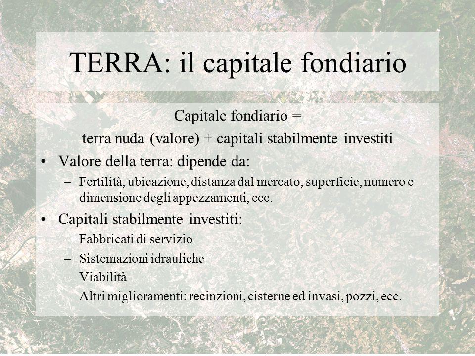 TERRA: il capitale fondiario