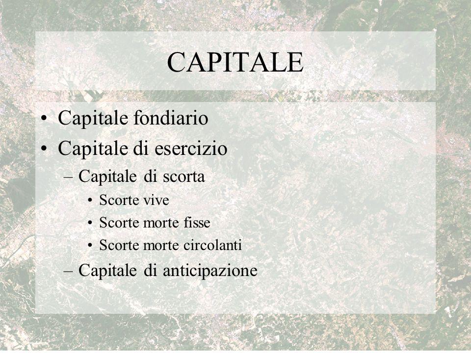 CAPITALE Capitale fondiario Capitale di esercizio Capitale di scorta