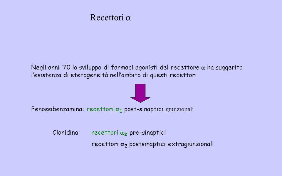 Recettori a Negli anni '70 lo sviluppo di farmaci agonisti del recettore a ha suggerito l'esistenza di eterogeneità nell'ambito di questi recettori.