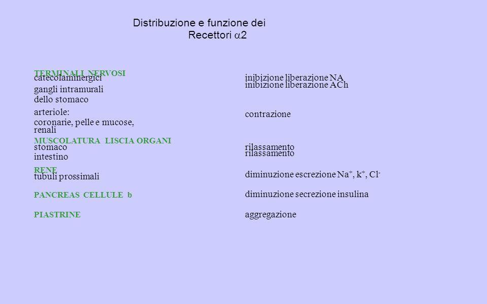 Distribuzione e funzione dei Recettori a2