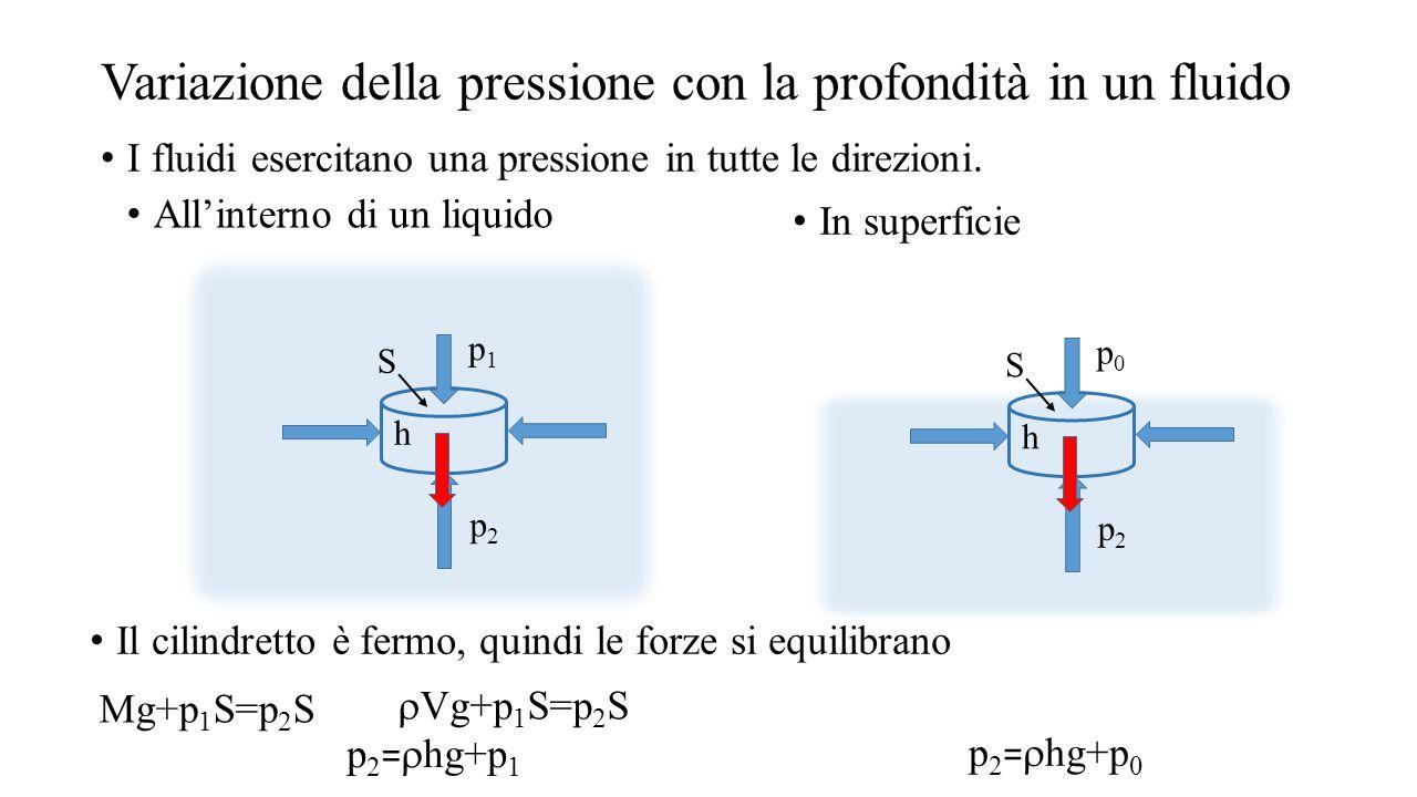 Variazione della pressione con la profondità in un fluido