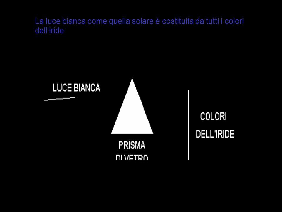 La luce bianca come quella solare è costituita da tutti i colori dell'iride