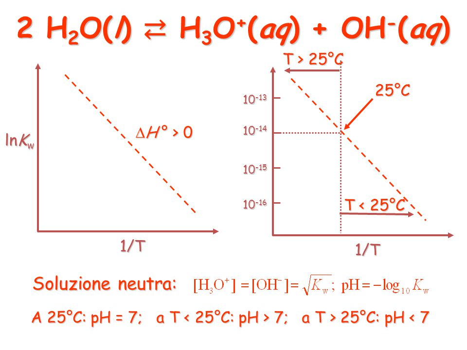 2 H2O(l) ⇄ H3O+(aq) + OH-(aq)