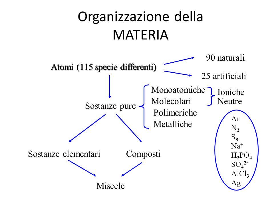 Organizzazione della MATERIA