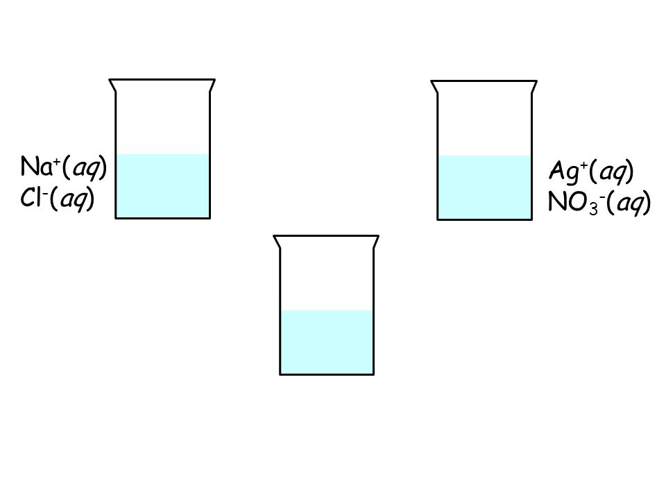 Na+(aq) Cl-(aq) Ag+(aq) NO3-(aq)