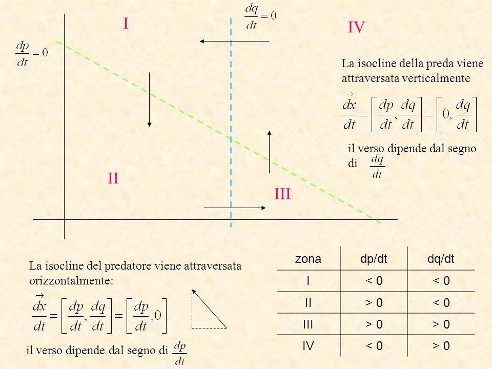 I IV II III La isocline della preda viene attraversata verticalmente