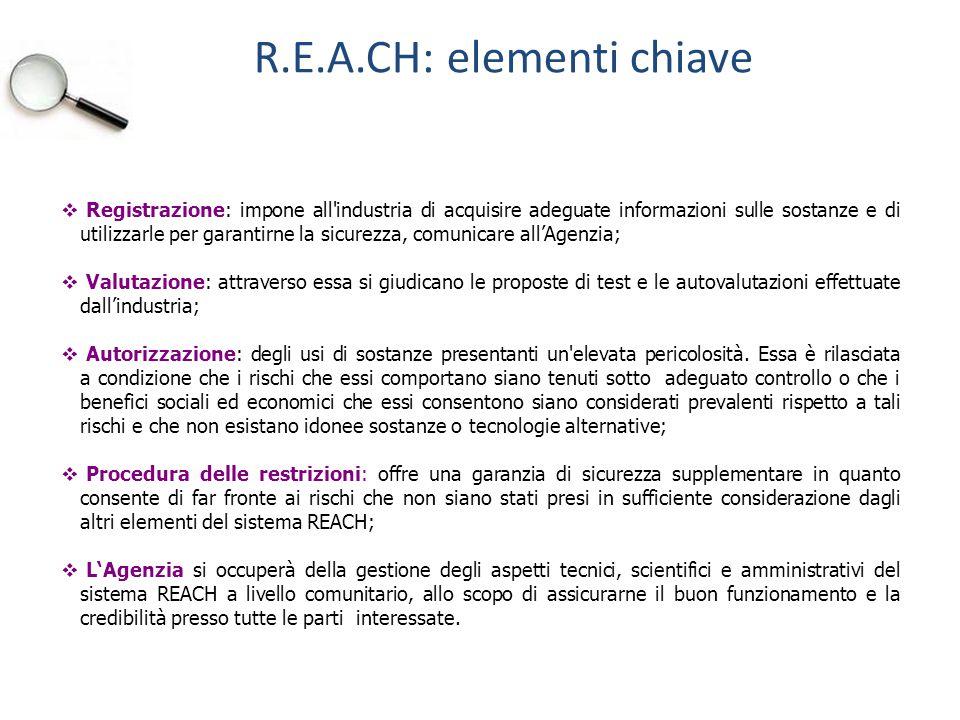 R.E.A.CH: elementi chiave