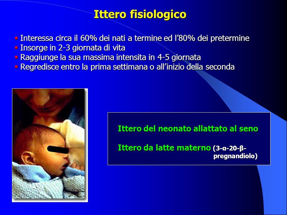 Ittero fisiologico Interessa circa il 60% dei nati a termine ed l'80% dei pretermine. Insorge in 2-3 giornata di vita.