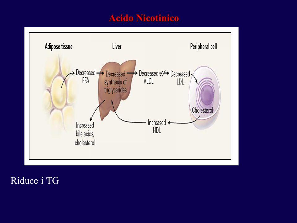 Acido Nicotinico Riduce i TG