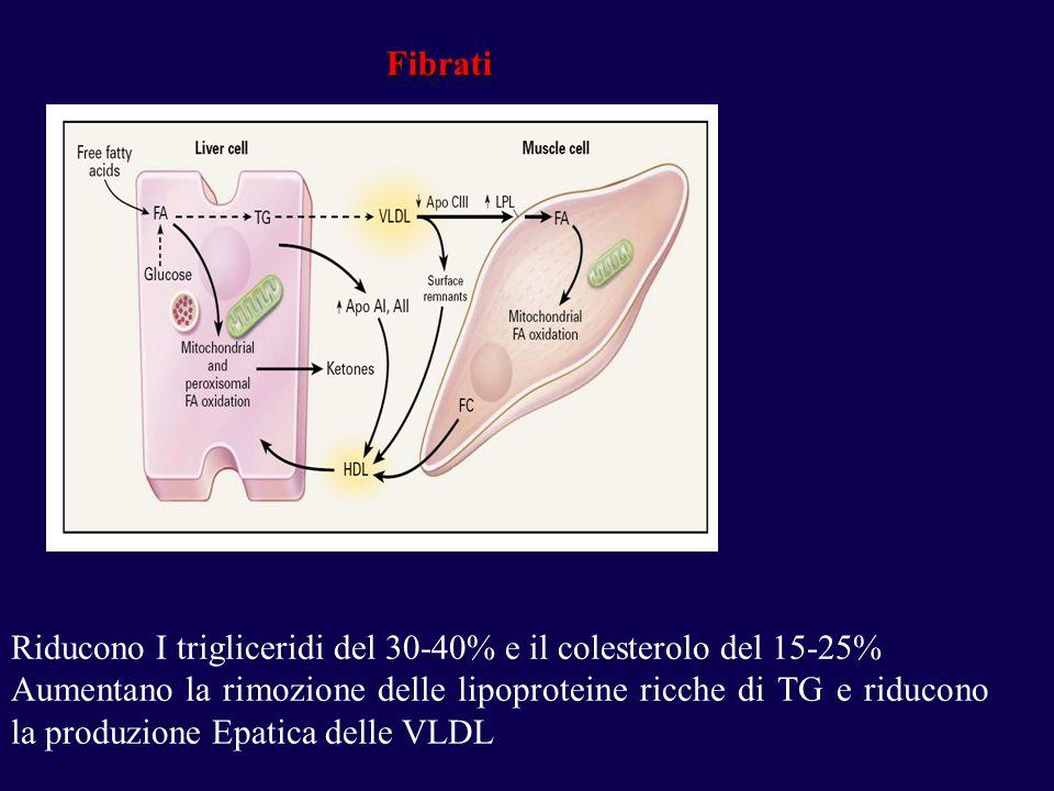 Riducono I trigliceridi del 30-40% e il colesterolo del 15-25%