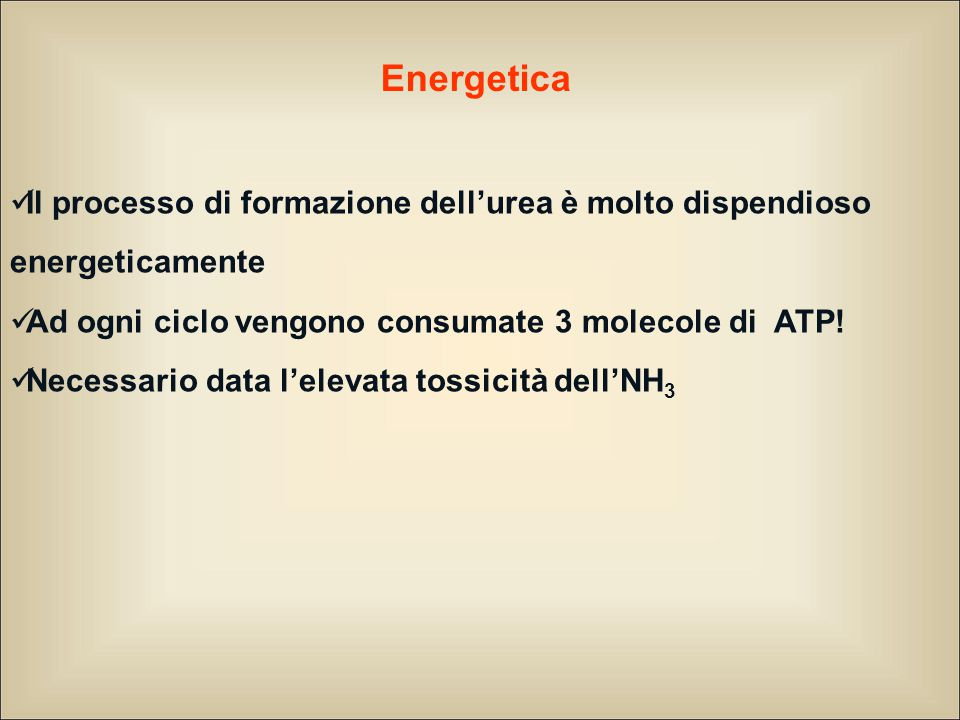 Energetica Il processo di formazione dell'urea è molto dispendioso energeticamente. Ad ogni ciclo vengono consumate 3 molecole di ATP!