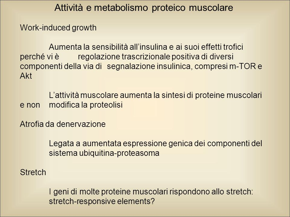 Attività e metabolismo proteico muscolare