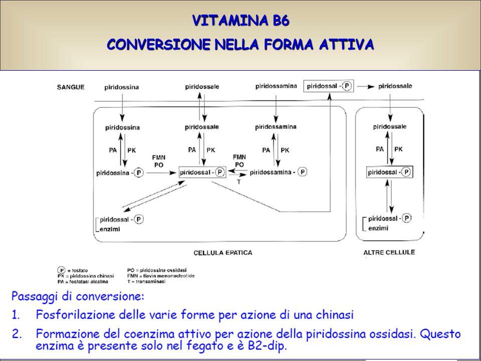 CONVERSIONE NELLA FORMA ATTIVA