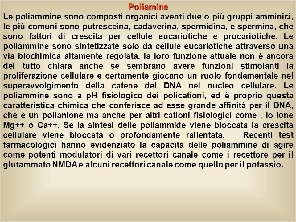 Poliamine