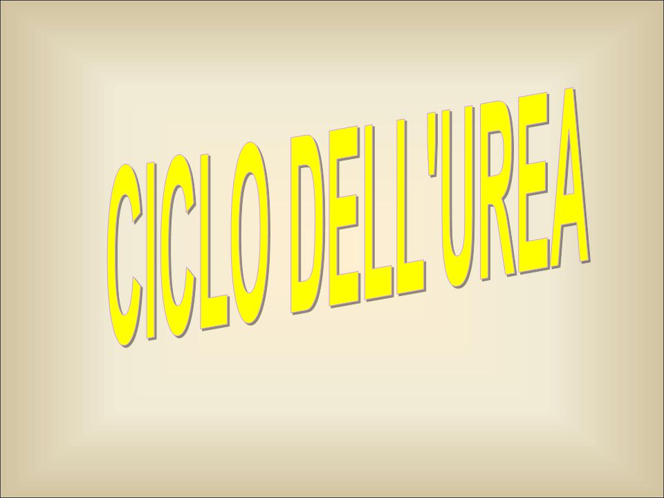 CICLO DELL UREA