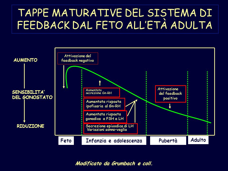 TAPPE MATURATIVE DEL SISTEMA DI FEEDBACK DAL FETO ALL'ETÀ ADULTA