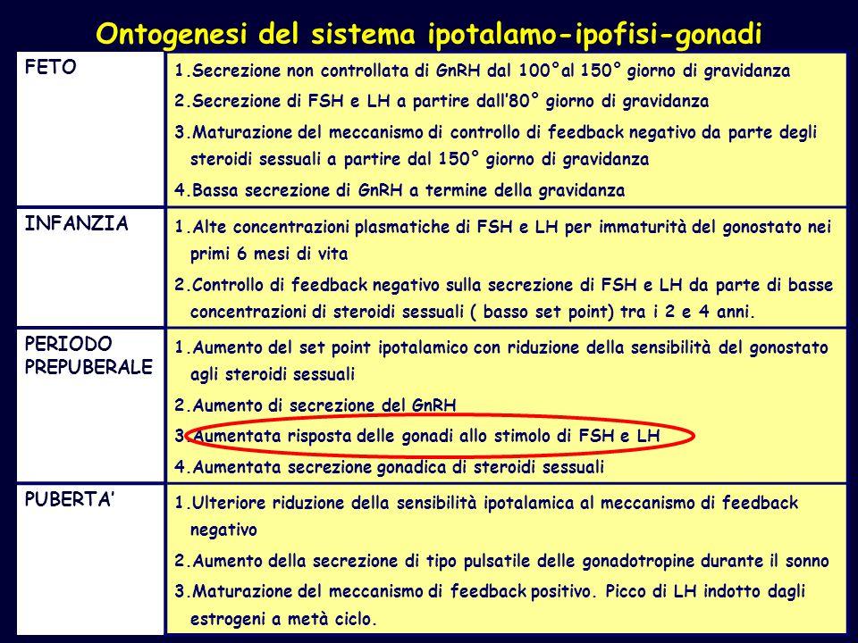 Ontogenesi del sistema ipotalamo-ipofisi-gonadi