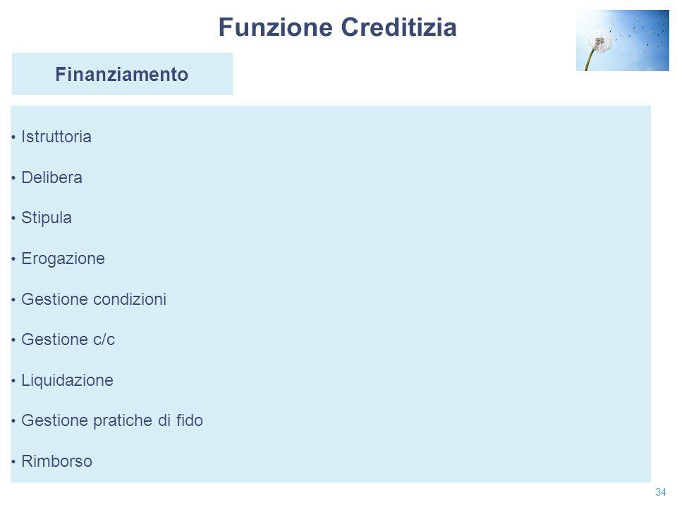 Funzione Creditizia Finanziamento Istruttoria Delibera Stipula