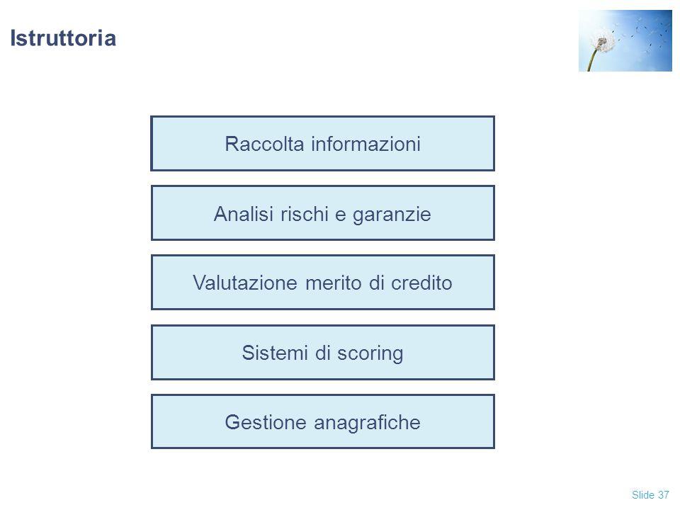 Istruttoria Raccolta informazioni Analisi rischi e garanzie