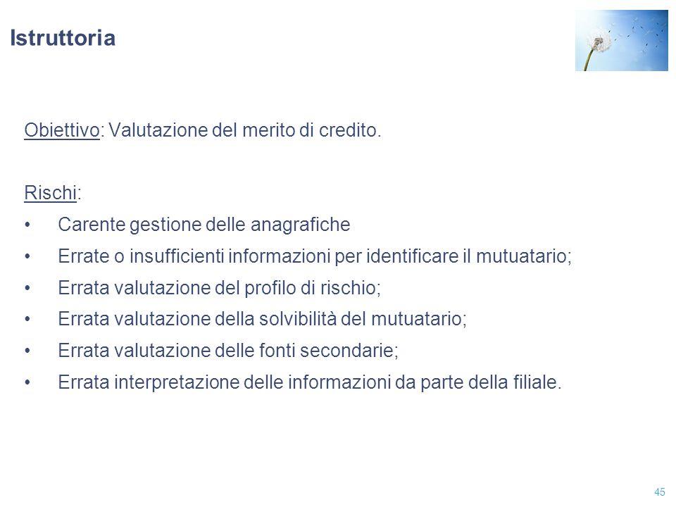 Istruttoria Obiettivo: Valutazione del merito di credito. Rischi: